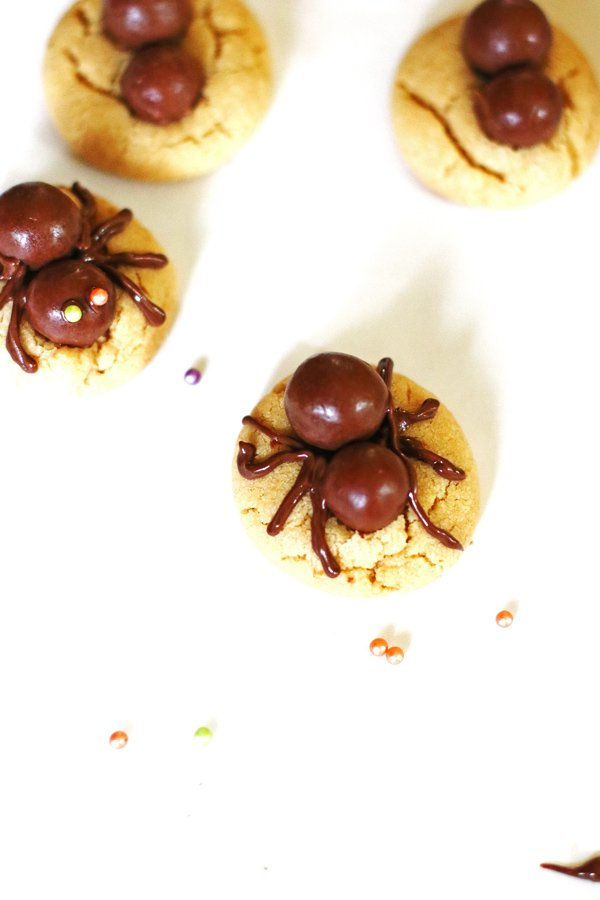 Placing the spider legs on to the cookies by using melted chocolate