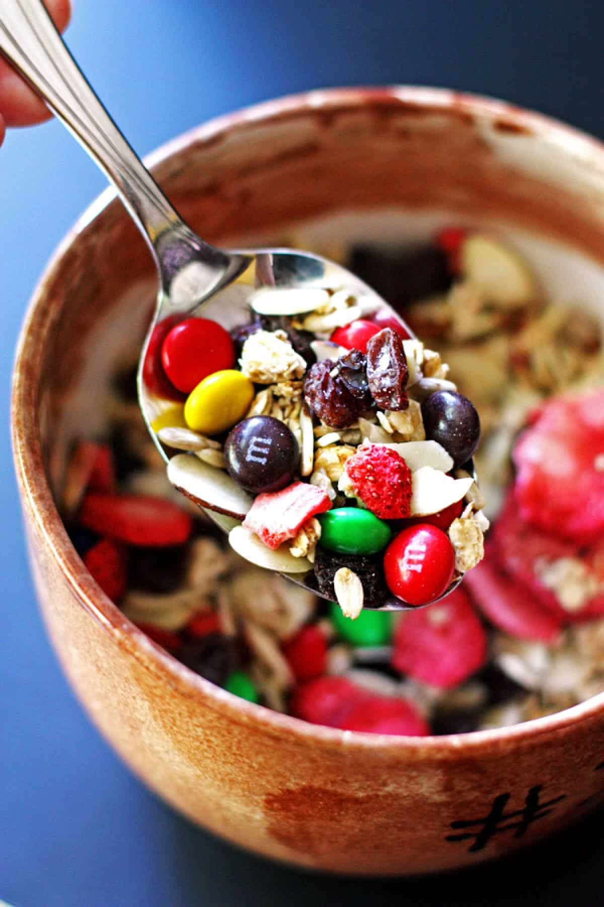 Trail Mix on a spoon near a bowl with the mix
